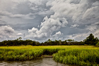 The Low Country