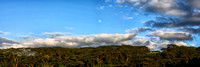 A panorama of the moonrise and trees in Kauai