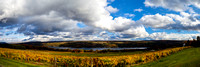 Vineyards and Keuka Lake Panorama Chris Walters Photography